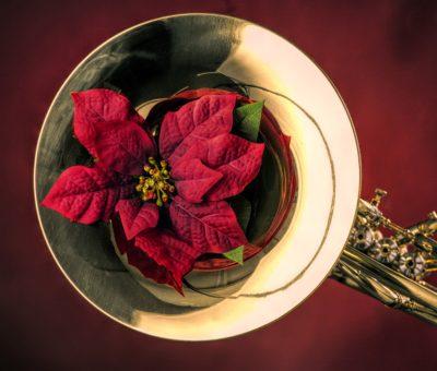 christmas horn5
